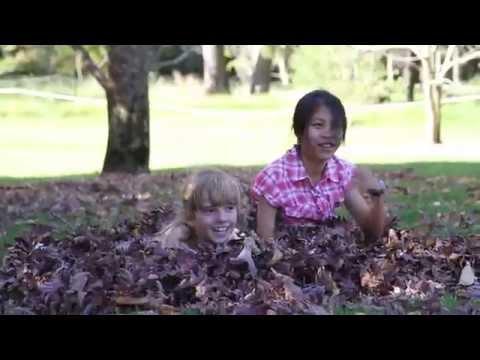 3am Church Camp Video, Meroo Christian Centre Sydney Australia, bush flower gardens