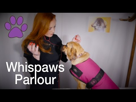 🐾Whispaws Parlour🐾 ASMR Dog Spa & Massage | Fur Brushing & Ear Examination