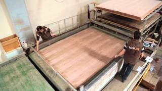 WOODLENT - VENEERED MDF FACTORY