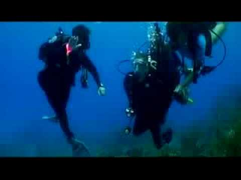 Dive Pirates 2008 Program