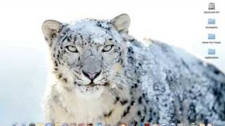 Snow Leopard - Best of new Wallpapers!