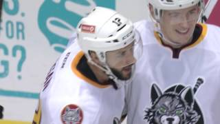 Game Highlights Oct 29 Chicago Wolves vs. Rockford IceHogs