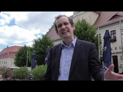 AfD erfolgreich vor dem Verfassungsgericht - Norbert Kleinwächter - AfD