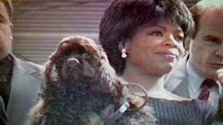 Oprah Brings Her Dog Solomon To Tv Trade Show - 1995