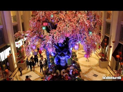 Bellagio & Palazzo Las Vegas Chinese New Years 2013 ...