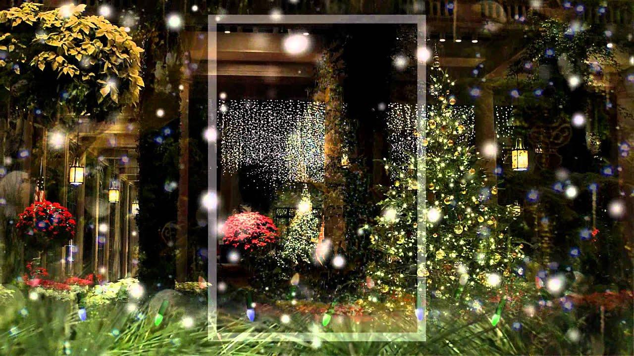 a longwood gardens christmas youtube - Longwood Gardens Christmas Lights