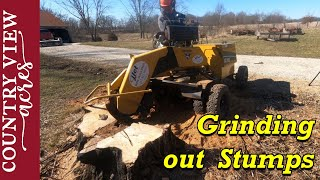 Removing Stumps with a Stump Grinder