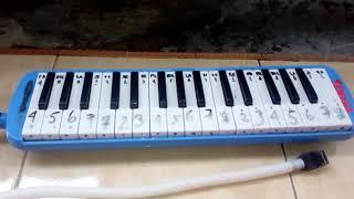 Cara menyanyikan lagu apuse dengan pianika