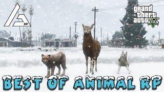 GTA 5 Roleplay - ARP - Best of Animal Roleplay.