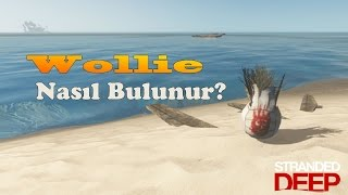 Stranded Deep Wollie Nasıl Bulunur? (Mr Wilson - Cast Away) Easter Egg | Playthrough