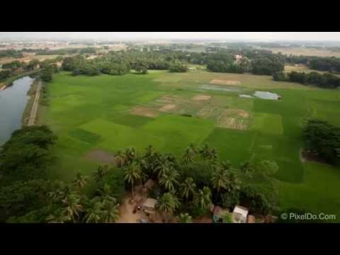 Indian Agriculture Field Drone Video Stock Footage - 5D mark III