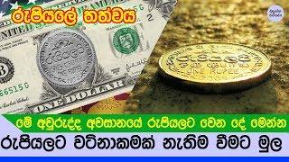 රුපියලට මෙහෙම වෙන්න හේතුව හා මේ වසරේ අවසානයට වෙන්න යන දේ මෙන්න - Situation of Sri lankan Economy