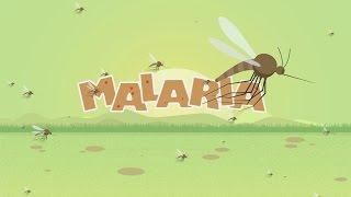 Malaria Animated