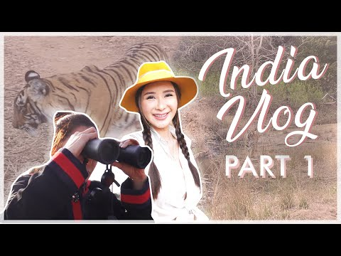MY FIRST TIME IN INDIA (WE VISITED THE SAFARI) PART 1   JAMIE CHUA