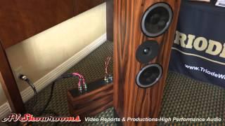 Border Patrol amplifiers, DACs, Gary Dews, Living Voice loudspeakers, Triode Wire Labs Capital Audio