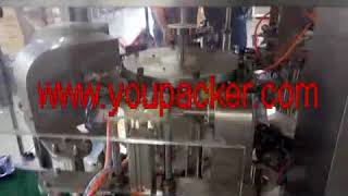 Premade bag rotary doy packing machine for chips