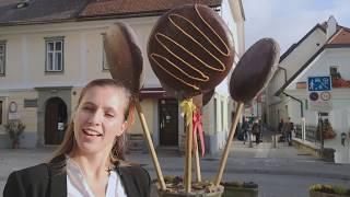 Radovljica tour and taste