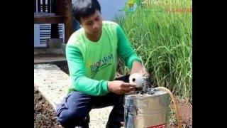 Aplikasi Pupuk Biofarm pada Tanaman Padi
