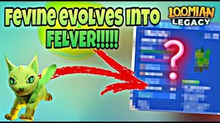 FEVINE TO FELVER EVOLUTION ON LOOMIAN LEGACY | ROBLOX
