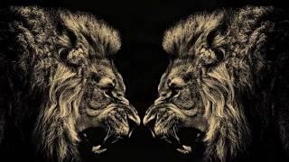 самые смертельные бои диких животных