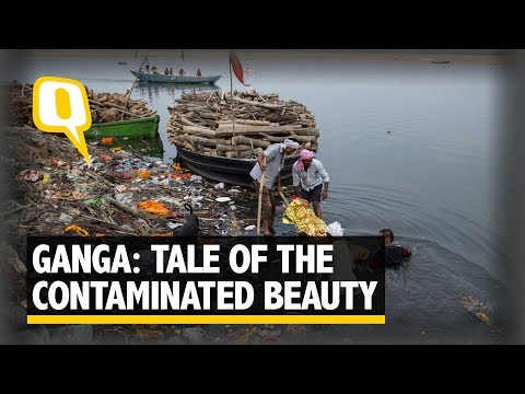 The Sacred Ganga: Tale of The Contaminated Beauty in 360 | The Quint