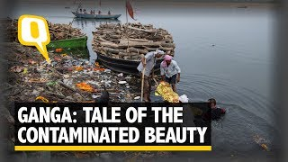The Sacred Ganga: Tale of The Contaminated Beauty in 360 | The Quint thumbnail