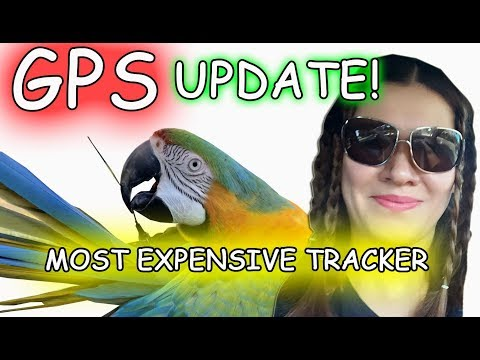 I AM SURPRISE ABOUT WORLD'S MOST EXPENSIVE GPS TRACKER