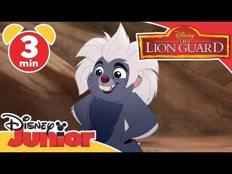 The Lion Guard | Running With The King Song | Disney Junior UK