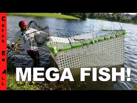 Thumbnail: MEGA FISH CAGE back INTO THE POND