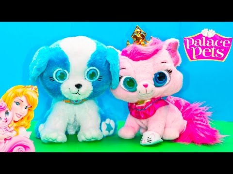 BRIGHT EYES PETS  Princess Kitty Dreamy and Friends Toy Review