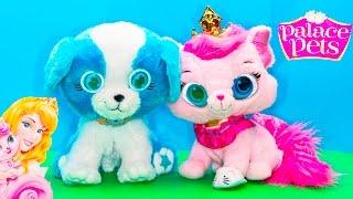 BRIGHT EYES PETS Disney Princess Kitty Dreamy + Doc McStuffins + Paw Patrol Bright Eyes Pets Vi