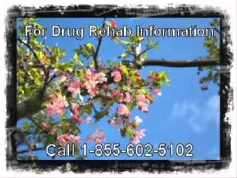 Best Government Based Local Rehab Centers By Bolingbrook