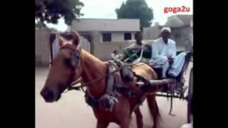Jeay Sindh jeay Sindh Wara Jian Sindhi Topi Ajrak wara Jian