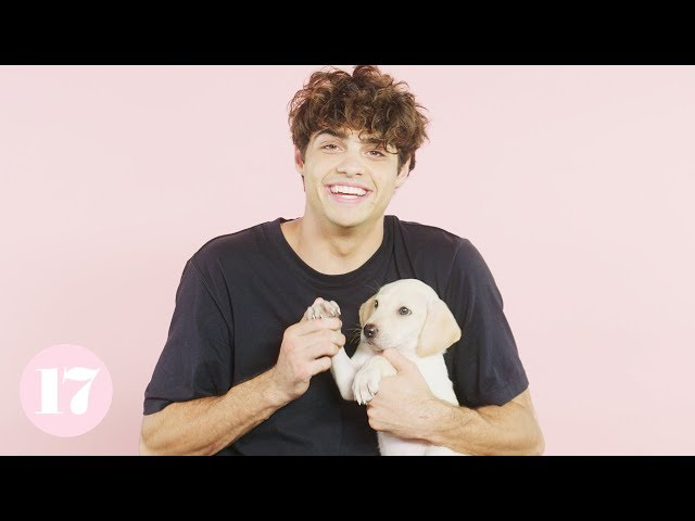 Noah Centineo from 'To All the Boys I've Loved Before' Plays 17 Questions