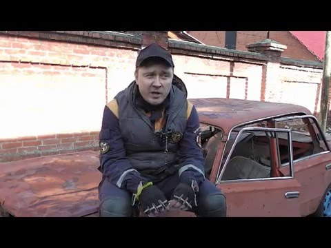 Собачьи питомники в Крыму Все о домашних животных