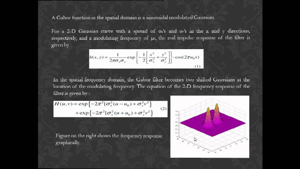 Texture Feature Segmentation Using K-Means Clustering and Gabor Filters_ by  Sankalp Mohanty