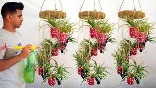 Reciclagem de Garrafas de Plástico em Vasos Pendurados Coloridos