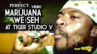 "Perfect vibing ""Marijuana we seh"" @ Tiger studio V [Ants bite riddim]"