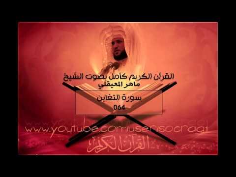 064 سورة التغابن ماهر المعيقلي القران الكريم كامل