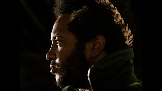 Thundercat - 'The Life Aquatic'