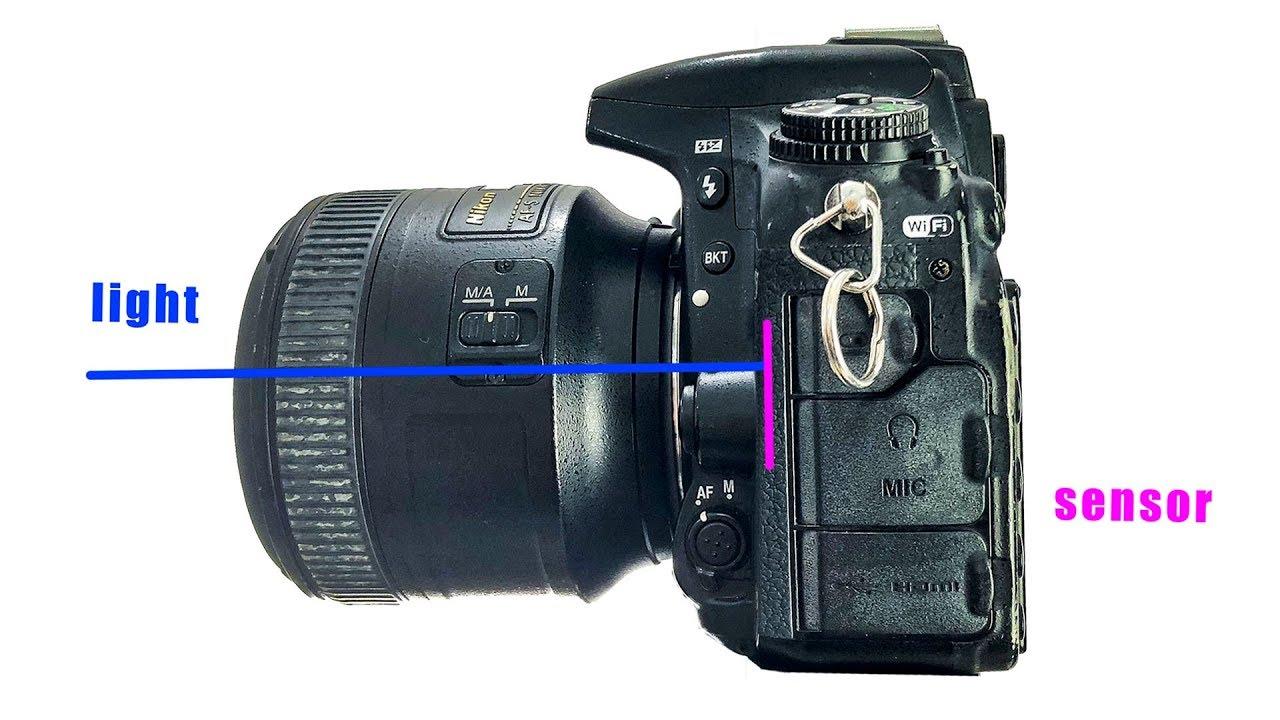 I'm buying Nikon Z6 NOT Canon EOS R / Sony / Fuji X-T3 mirrorless  comparison vs  review