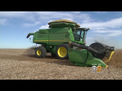 Trade Fight With China Could Devastate U.S. Farmers