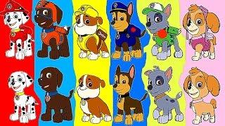 детские игры новые серии на детском канале НеПоСеДа