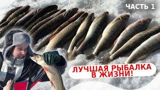 Белое озеро Ловля налима и судака на жерлицы Лучшая рыбалка в жизни