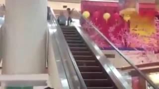 Крыса попыталась забраться вверх по эскалатору, ехавшему вниз