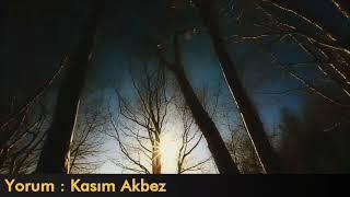 Serenad - Cahid Sıtkı Tarancı - Yorum: Kasım Akbez