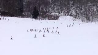 幼児団体バディスポーツ幼児園様の約350名のトレイン滑走の模様! みん...