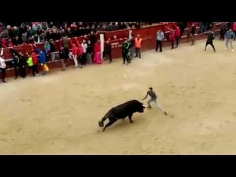 Cornada en el toro del aguardiente de Ciudad Rodrigo 2017