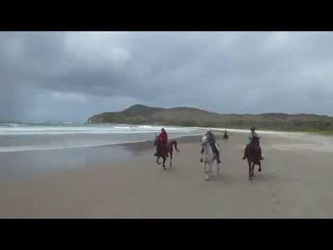 Group Beach Gallop October 2015