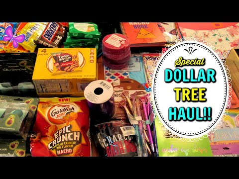 Special New DOLLAR TREE HAUL!  May 18, 2020 | #LeighsHome